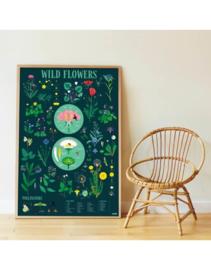 Poppik Wild Flower