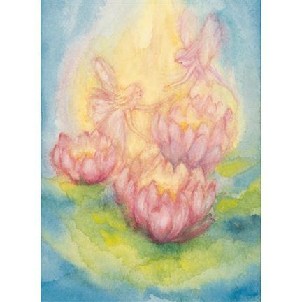 Ansichtkaart lotus elfen