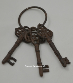 3 Sleutels aan ring