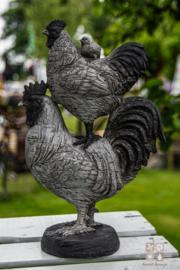 Gestapelde kippen