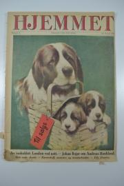 Hjemmet: moederhond met puppy`s in mandje