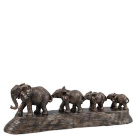 Wandelende olifanten familie