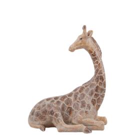 Giraf Gigi, klein