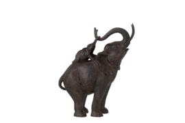 Olifant staand met kalf op rug