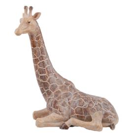 Giraf Gigi, groot
