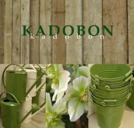 Kadobon (2)