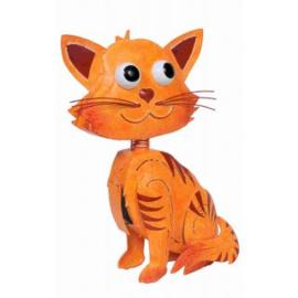 Kat Leo, oranje