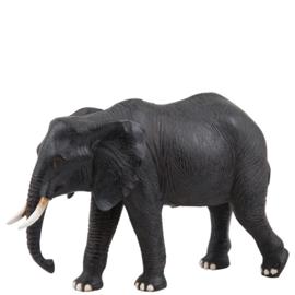 Mama olifant