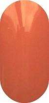 G4N gellak nr.5-oranje met een vleugje bruin