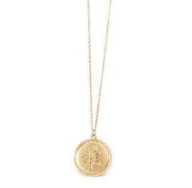 Rose Coin Ketting