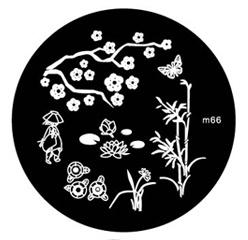image plate m66 (diameter 5,5cm)