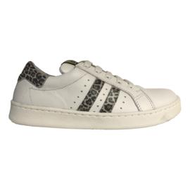 Clic CL-9756  Sneaker blanco jaguar