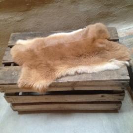 Nieuw konijnenVachtje haas konijn huid kleed velletje konijnenvacht vachtje konijnenvel ginger bruin cognac
