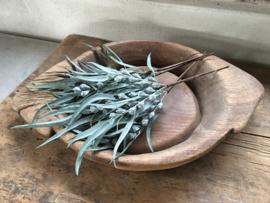 Decoratietakje vergrijsd olijfgroen kunst landelijk decoratietak toef toefje eucalyptus