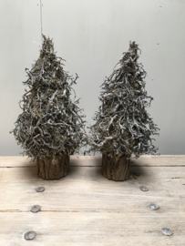 Vergrijsd houten kerstboom kerstboompjes kerstboompje boom boompje bonsai mos takken gedroogd grijs