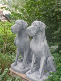 Groot betonnen beeld duitse dog hond beton tuinbeeld grijs grijze landelijk stoer robuust groot