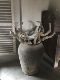 Grote stoere dikke kronkeltak decoratie landelijk vergrijsd