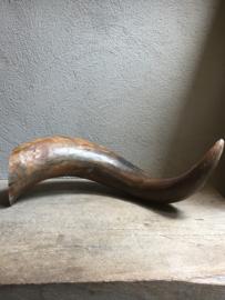 Mega grote hoorn gewei buffel stier koehoorn landelijk industrieel bruin