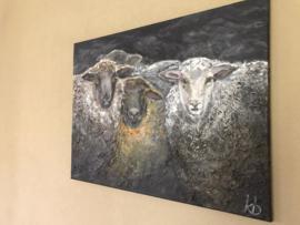 Prachtig handgeschilderd schilderij 80 x 60 cm schaap schapen landelijk sobere naturel tinten sober stoer
