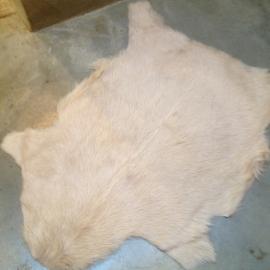 Nieuwe geitenhuid vacht crème beige
