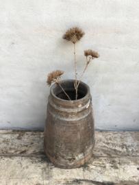 Prachtige sobere Decoratietak berenklauw kunst 77 cm allium decoratie tak bloem