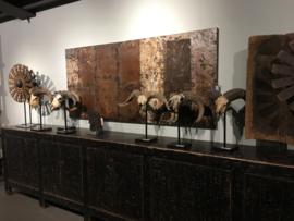 Prachtige originele oude bokkenkop schedel bok geit gewei op voet stoer landelijk