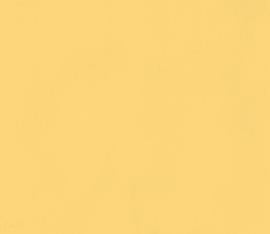 krijtverf 4 liter Zonnestraal geel