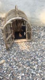 Vergrijsd rotan bench kennel hondenmand kattenmand vervoer