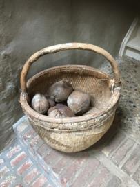Gedroogde Coco nut naturel vergrijsd 15-20 cm noot noten