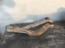 Stuk grove liaan liaantak lianen kronkeltak stronk landelijk stoer hout houten