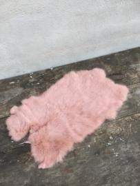 Nieuw konijnenVachtje haas konijn Oud rose roze huid vacht vachtje kleed kleedje bont bontje kleed velletje