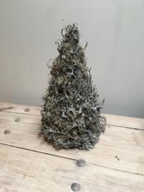 Vergrijsd houten kerstboom kerstboompjes groot kerstboompje boom boompje bonsai mos takken gedroogd grijs