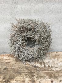 Prachtige vergrijsde krans asparagus in houten kratje wax waxed 60 cm landelijk stoer sober grijze grijs