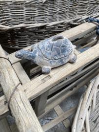Stenen schaaltje schildpad turtle met deksel grijs beige