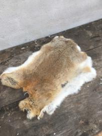 Nieuw konijnenVachtje haas konijn bruin ginger cognac huid kleed velletje