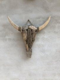 Oud vergrijsd houten drijfhout drijfhouten driftwood Buffalo 55 x 60  kop hoofd bull buffel ossenkop gewei schedel koe rund vergrijsd hout  hoorns