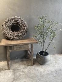 Prachtige kunst olijfplant olijfboom imitatie Olijf olive tree