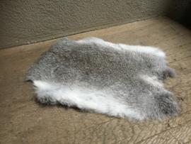 Nieuw konijnenVachtje haas konijn grijs grijze huid kleed velletje