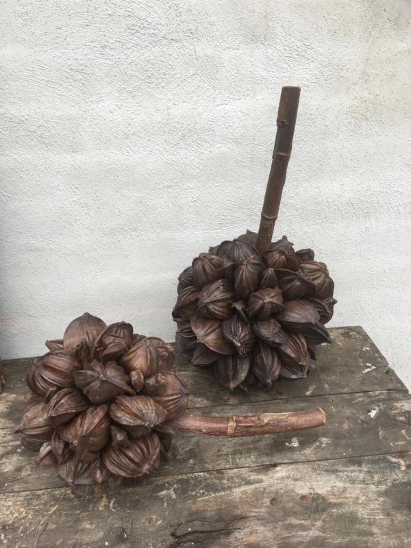 Gedroogde decoratietak deco coconut naturel landelijk tak bloem