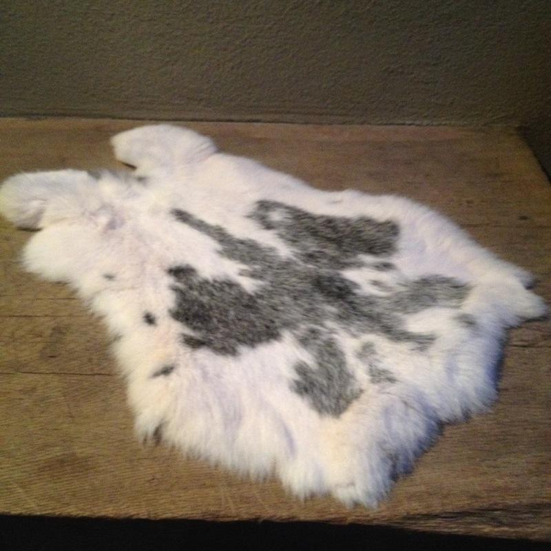 Nieuw konijnenVachtje haas konijn huid kleed velletje