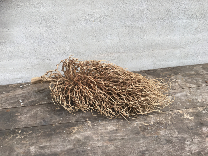 Prachtige gedroogde decoratie tak naturel bush 50 cm