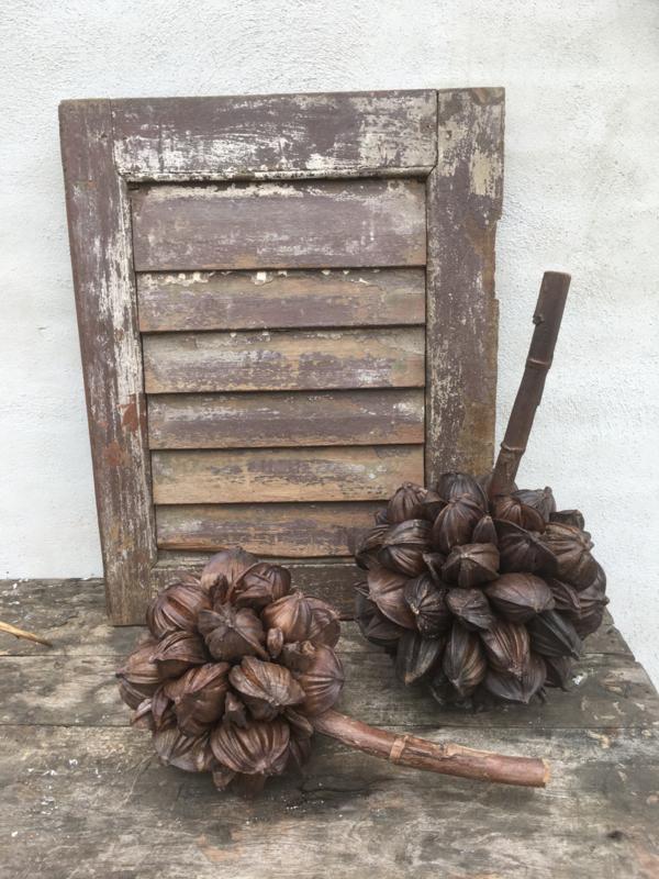 Gedroogde decoratietak deco coconut naturel landelijk tak bloem L large groot