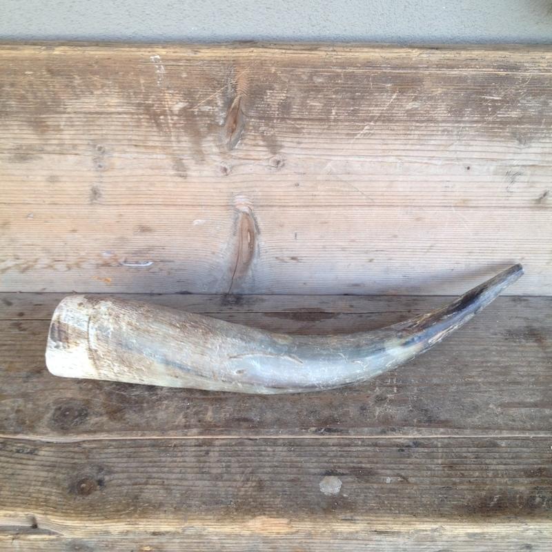 Grote stoere landelijke hoorn buffel koe landelijk 50 cm
