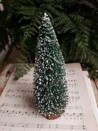 dennenboom 20 cm