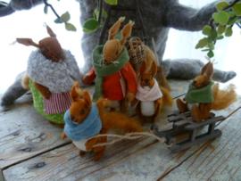 Winterkleren voor familie eekhoorn met patroon