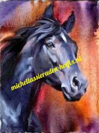 Paard 45x60 cm