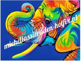 Kleurige Olifant 30x40 cm