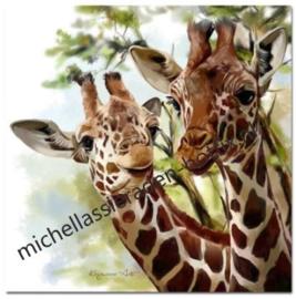 Giraffen 45x45 cm