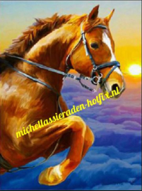 Springend Paard 45x60 cm