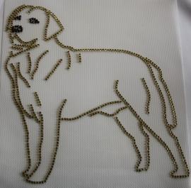 Labrador (blond)